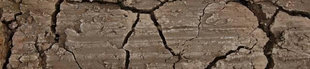 Remediación de suelos